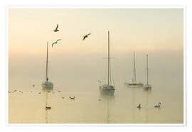 Premium-plakat  A misty morning over Lake Windermere Lake District