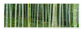 Premium-plakat  Green bamboo forest in Kyoto, Japan - Jan Christopher Becke