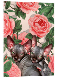 Akrylbillede  Sphynx kitten with roses - Mandy Reinmuth