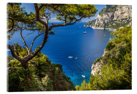 Akrylbillede  Wonderful sea view in Capri (Italy) - Christian Müringer