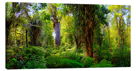 Lærredsbillede  New Zealand Waipoua Forest - Michael Rucker