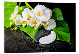 Print på skumplade  White orchids and Yin-Yang stones