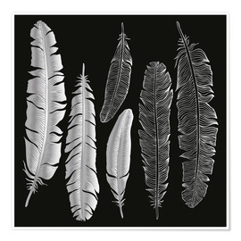 Premium-plakat  Feathers in silver