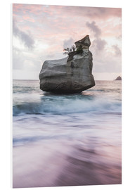 Print på skumplade  Cathedral Cove ved solopgang, New Zealand - Matthew Williams-Ellis