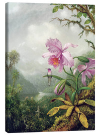 Lærredsbillede  Hummingbird Perched on an Orchid Plant - Martin Johnson Heade