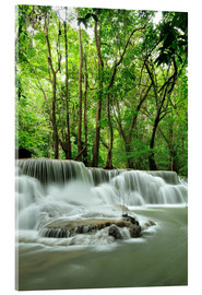 Akrylbillede  Waterfall in forest of Thailand