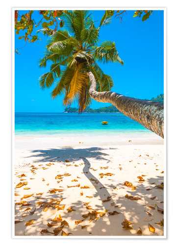 Premium-plakat Sea view with palm tree