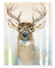 Premium-plakat Whitetailed Deer Surrounded By Birches