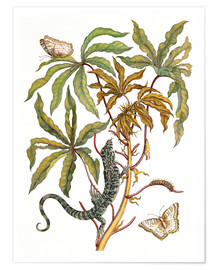 Premium-plakat cassava with crocodile and butterfly metamorphosis