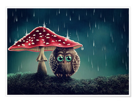 Premium-plakat Owl in the rain