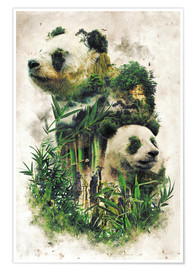 Premium-plakat  The Giant Panda - Barrett Biggers