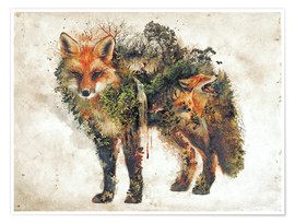 Premium-plakat  Surreal Fox Nature - Barrett Biggers