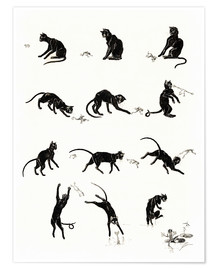 Premium-plakat  The cat and the frog - Théophile-Alexandre Steinlen