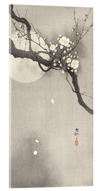 Akrylbillede  Plum Blossoms at Night - Ohara Koson
