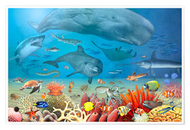 Premium-plakat Animals in the sea