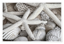 Premium-plakat Beach Treasures