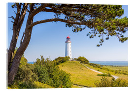 Akrylbillede  lighthouse Dornbusch at Hiddensee