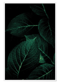 Premium-plakat Dark Leaves 1