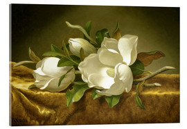Akrylbillede  Magnolias on Gold Velvet Cloth - Martin Johnson Heade