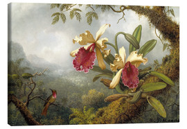 Lærredsbillede  Orchids and Hummingbird - Martin Johnson Heade