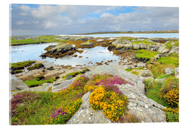 Akrylbillede  Ireland Landscape with wild flowers