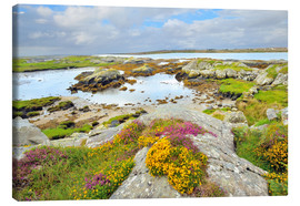 Lærredsbillede  Ireland Landscape with wild flowers