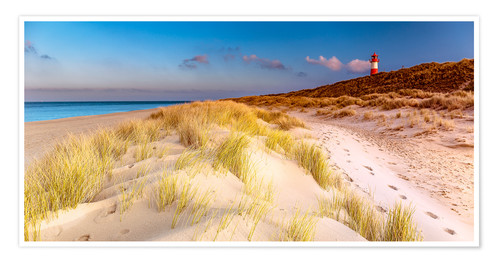 Premium-plakat Dunes at the North Sea
