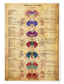 Premium-plakat Meaning of the chakras