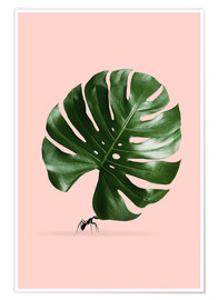Premium-plakat Monstera Ant