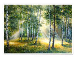 Premium-plakat Sunlight in the green forest