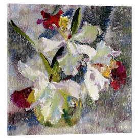 Akrylbillede  Orchids II - Augusto Giacometti