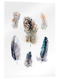 Akrylbillede  Feathers collection - Verbrugge Watercolor