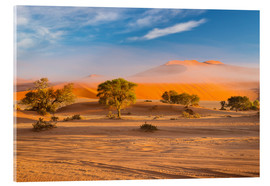 Akrylbillede  Morning mist over sand dunes and Acacia trees at Sossusvlei, Namibia - Fabio Lamanna