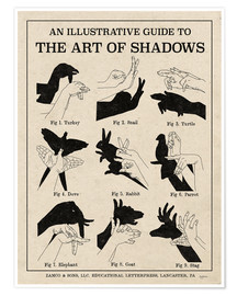 Premium-plakat  The Art of Shadows X - Mary Urban