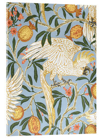 Akrylbillede  Cockatoo and Pomegranate - Walter Crane