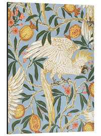 Print på aluminium  Cockatoo and Pomegranate - Walter Crane