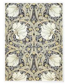 Premium-plakat  Pimpernel - William Morris