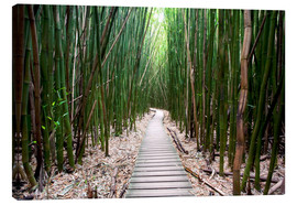 Lærredsbillede  Trail through the bamboo forest - Pacific Stock