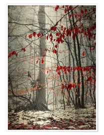 Premium-plakat  Winter forest with last leaves - Westend61