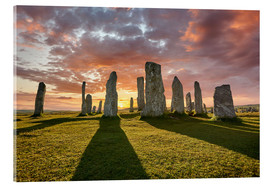 Akrylbillede  The plants of Callanish - age fotostock