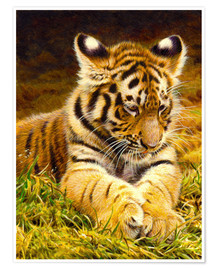 Premium-plakat Young tiger lying in grass