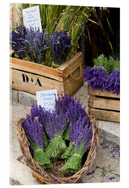 Akrylbillede  Baskets with lavender bouquets - Brenda Tharp