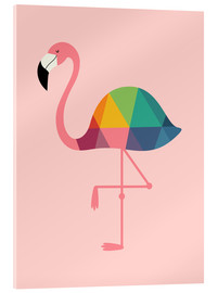 Akrylbillede  Rainbow Flamingo - Andy Westface