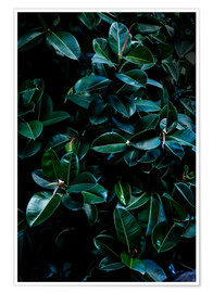 Premium-plakat Dark Leaves 4