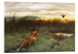 Akrylbillede  Fox and duck - Bruno Andreas Liljefors