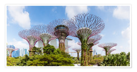 Premium-plakat  The Supertree grove in Singapore - Matteo Colombo