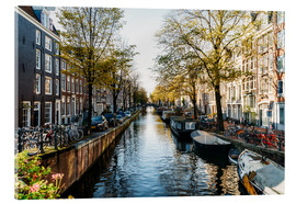 Akrylbillede  Beautiful Autumn In Amsterdam City - Radu Bercan