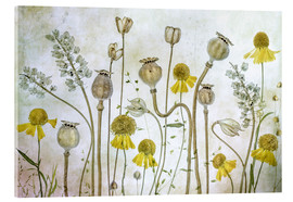 Akrylbillede  Poppy and Helenium - Mandy Disher