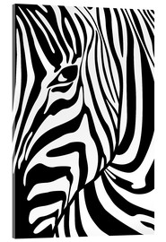 Akrylbillede  Black And White Zebra Portrait - Radu Bercan