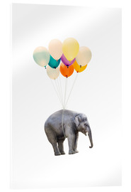 Akrylbillede  Elephant with colorful balloons - Radu Bercan